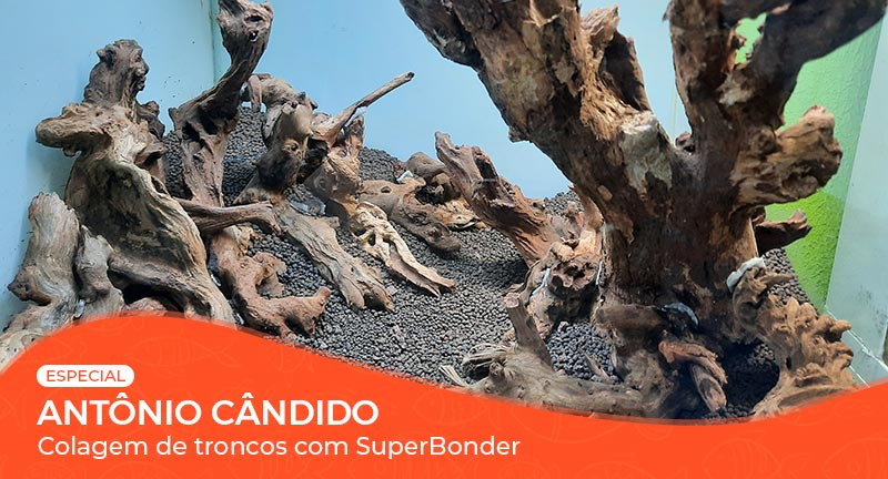 Vídeo: Colagem de troncos com Super Bonder