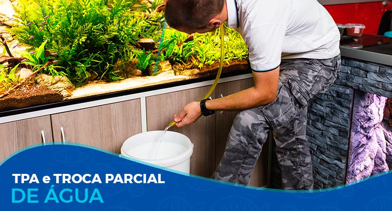 O que é TPA e por que preciso fazer troca parcial de água?